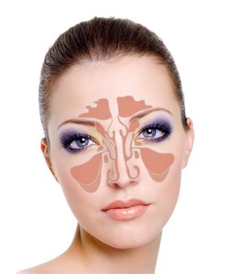 Околоносовые придаточные пазухи носа
