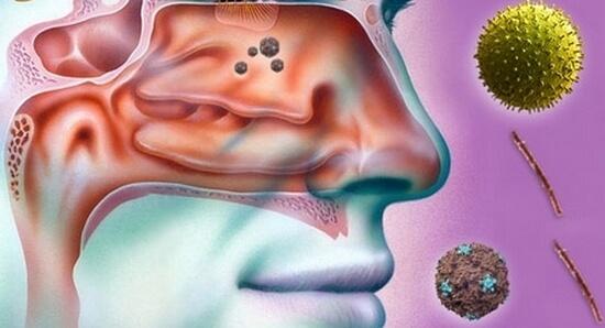 Патогенные микроорганизмы, вдыхаемые человеком