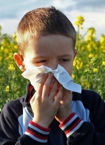 У ребенка аллергический ринит